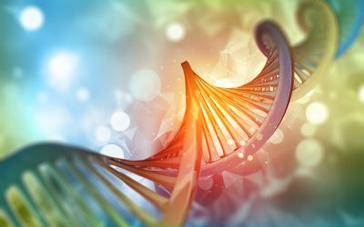 China's New Regulations on the Management of Human Genetic Resources